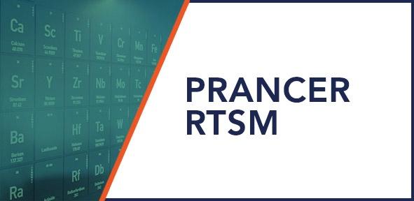 Prancer RTSM